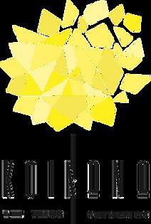kinono_logo(1).png