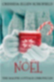 Noel_Cover_for_Kindle.jpg