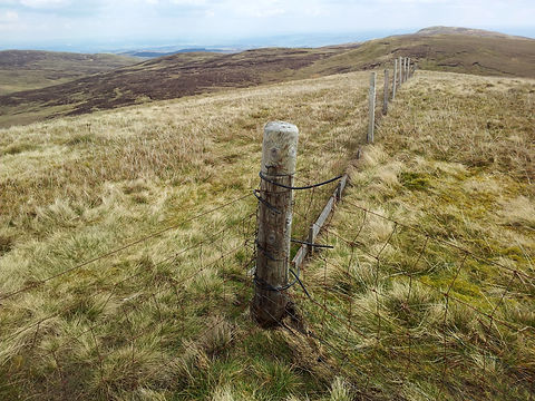 county-boundary-fence.jpg