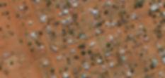 OrthoSample2.jpg