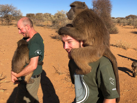 Christian Cacace in Namibia