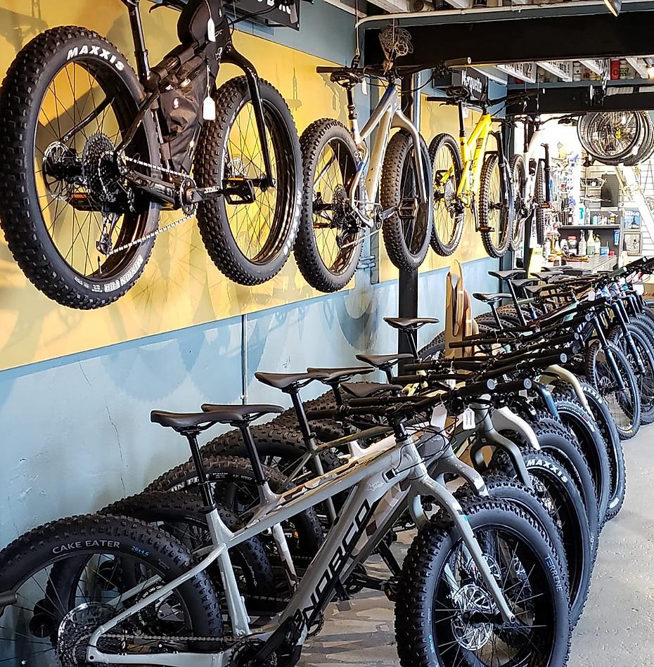 Lakeshore Bike shop bike rental kids club bike service marquette now