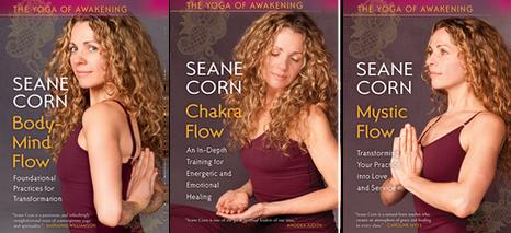 The Yoga of Awakening Series