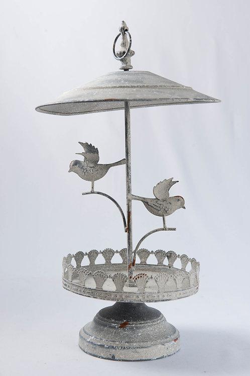 Coreto Birds