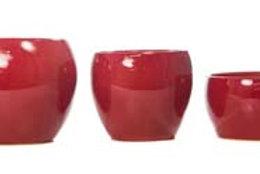 Trio Bahamas Vermelho