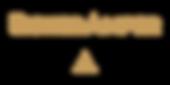 eisner logo.png