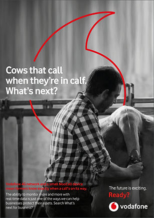Vodafone MTM w next cow.jpg