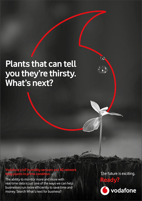 Vodafone MTM w next plant.jpg