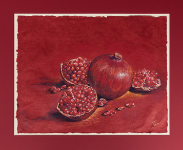 Pomegranate - Spain