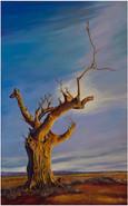 Dead Tree in the Savannah