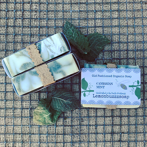 Cambrian Mint Organic Soap