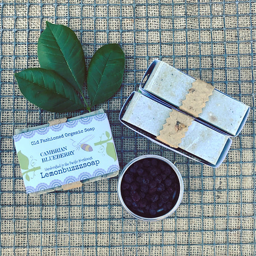 Cambrian Blueberry Organic Soap