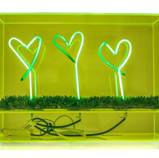 Neon Heart Garden.jpg