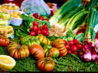 Mediterranean Diet Enhances Elderly's Mental Health, Study Discovers