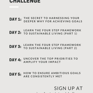 Insta: Challenge Agenda