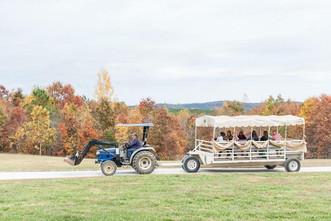 Wedding Tow Wide.jpg