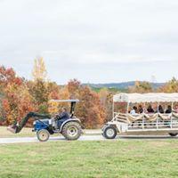Wedding Tow.jpg