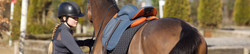 A revolution in saddle design