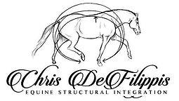logo chris defilippis.jpg