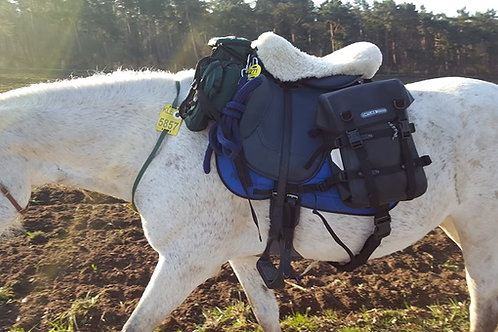 Endurance saddle set