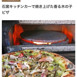 秋の木ノ子特集!