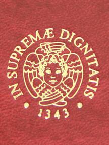 Logo Università di Pisa Cliché Tesi di Laurea - Tesi Artigianali Pisa
