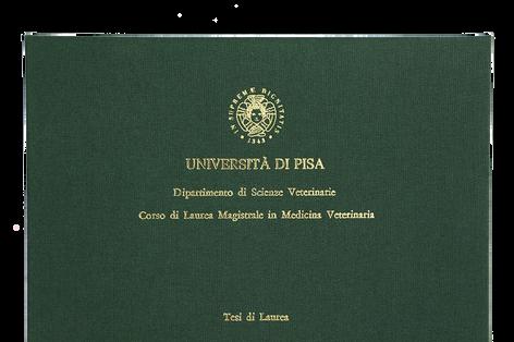 Rilegatura Tesi di Laurea in Tela Verde - Tesi Artigianali Pisa