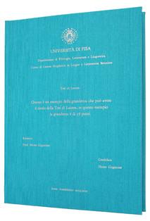 Rilegatura Tesi di Laurea in Fintatela Turchese - Tesi Artigianali Pisa