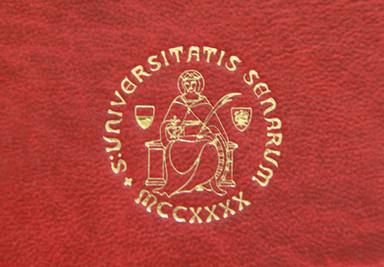 Logo Università di Siena Cliché Tesi di Laurea - Tesi Artigianali Pisa