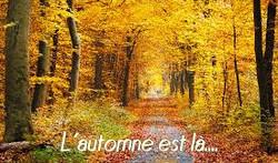 L'automne est là_21