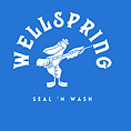 seal 'n wash-1.png