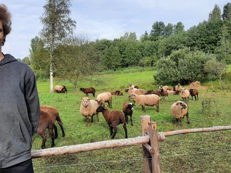 Lauksaimniecības specialitātes jaunieši atgriežas no praksēm