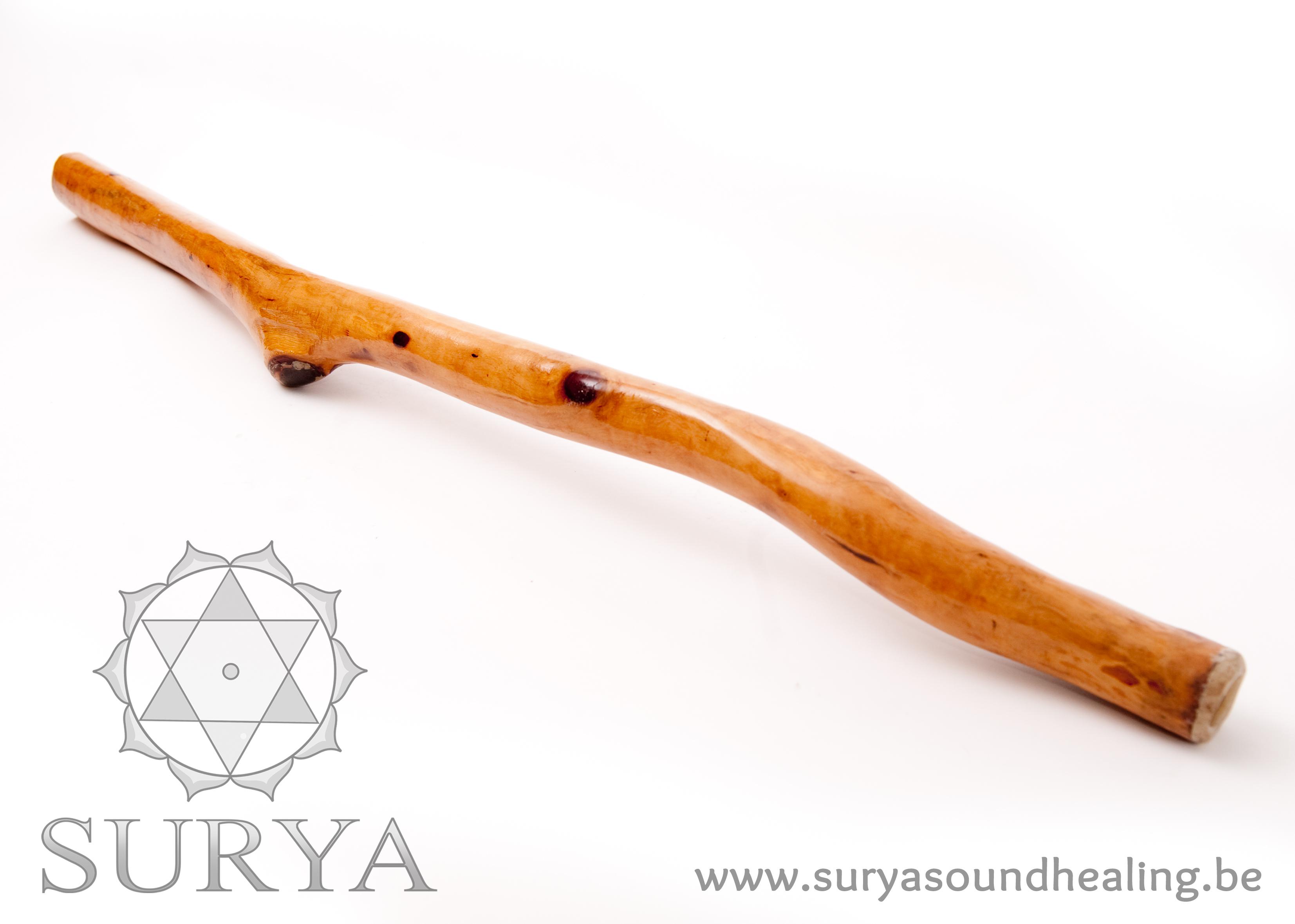 Kleine Eucalyptus Didgeridoos