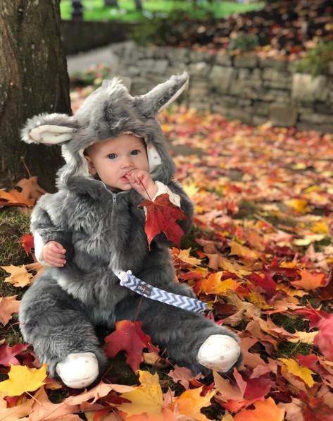 Halloween Costume (my baby!)
