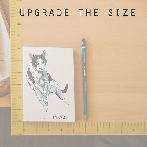 Upgrade the size of existing purchase