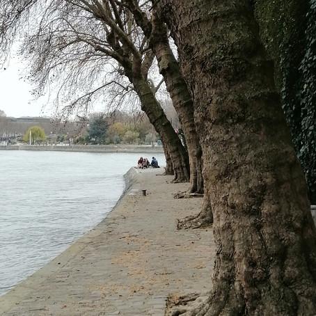 Le vaisseau de pierre tangue sur la Seine