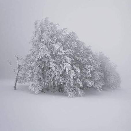 L'hiver de Midoriko