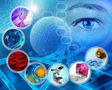 investigación-enfermedades-profesionales