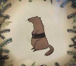 Marmot with Goralski belt