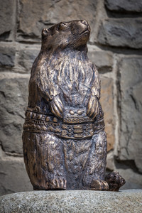 Marmot with Highlander belt