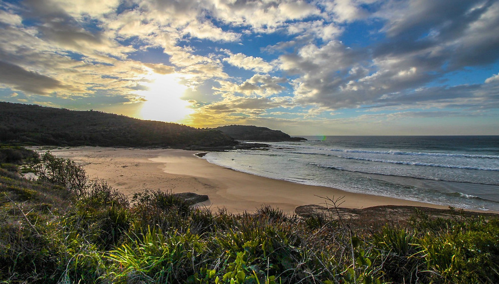 Munmorah Conservation Area, Central Coast, NSW