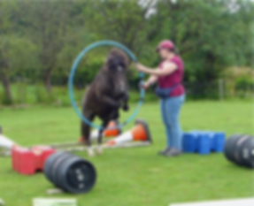 hoop jump true colour_edited_edited.png