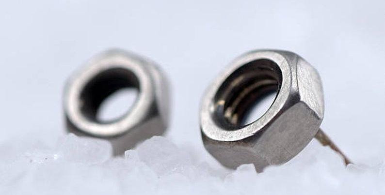 Nut Stud Earring