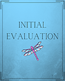 Initial Evaluation (1).png