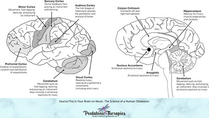 Your Brain on Music; What is Music Therapy?