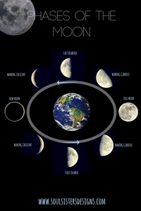 Infographic of the Phases of the Moon