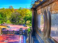 9 - Central Park Beauty