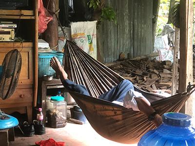 hammock.jpg