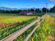 15 - Fields of Green
