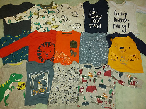 14 Top bundle Various Brands 9-12 m